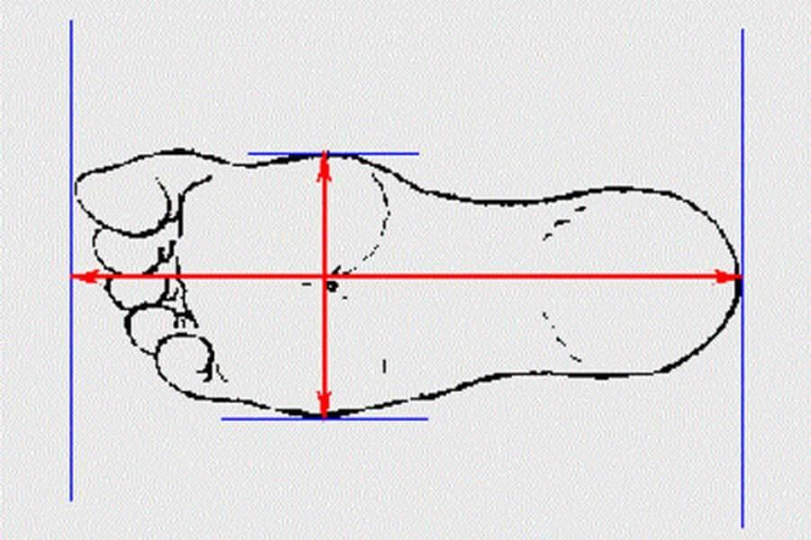 Cách đo size giày & check code giày mới nhất